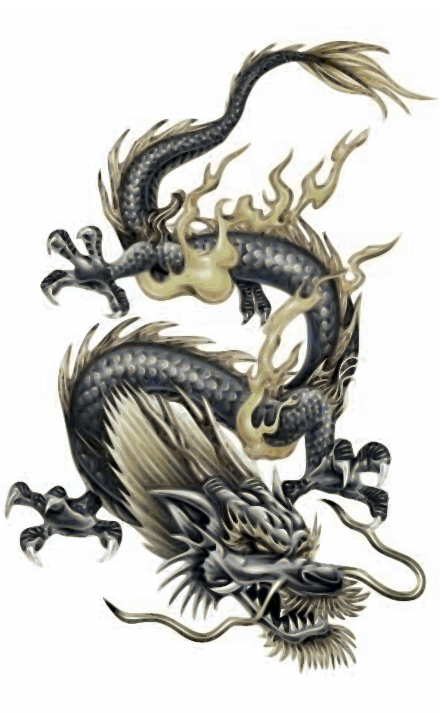50 Dragon Tattoos Designs and Ideas - Yo Tattoo