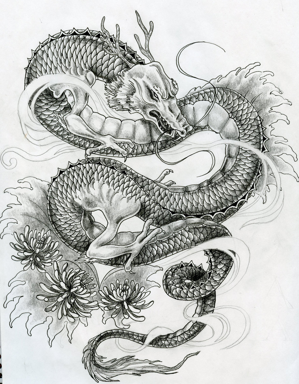 Japanese Dragon Tattoo Designs Dragon
