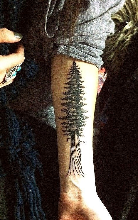 redwood-tree-tattoo
