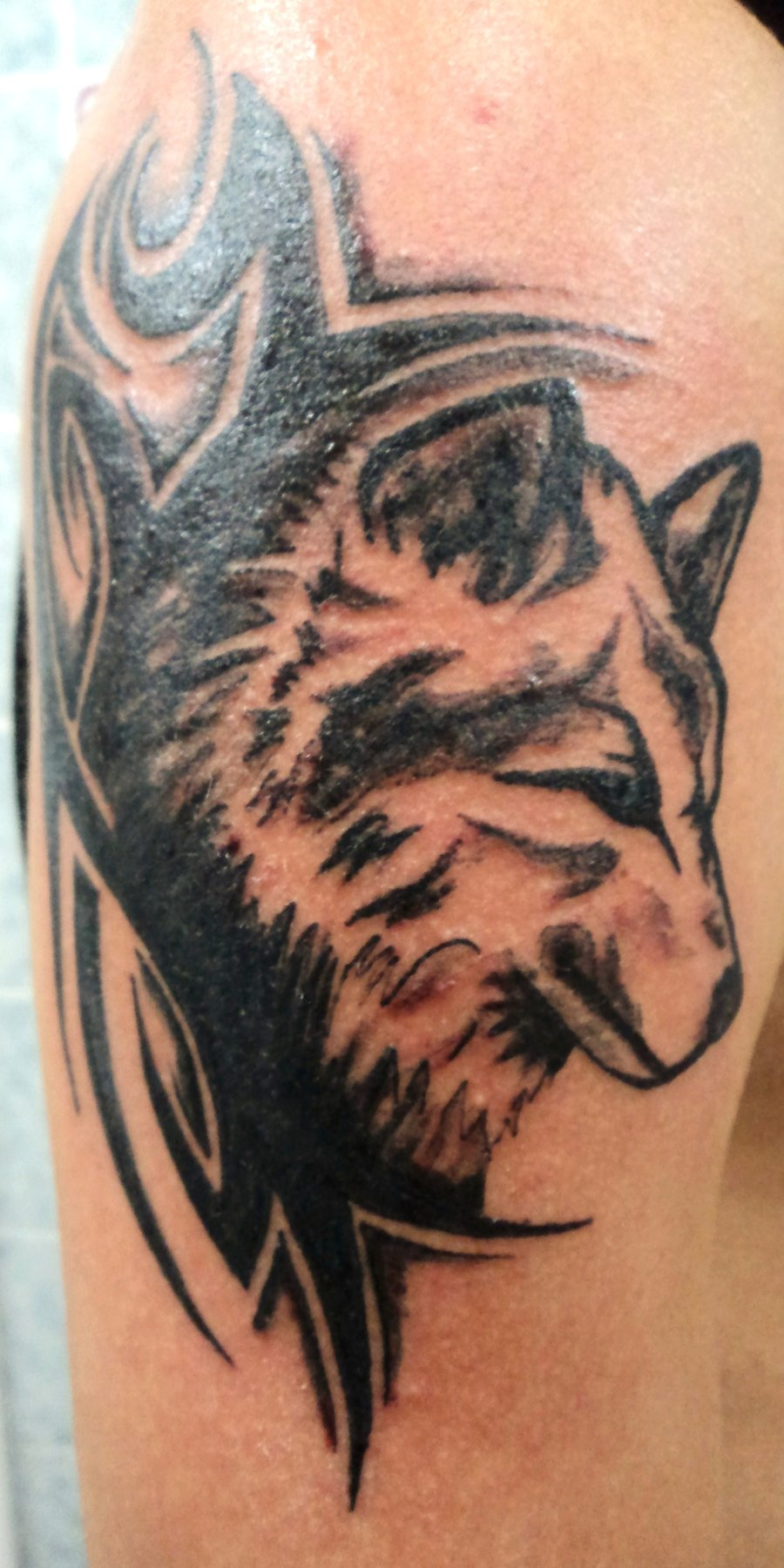 tribal-wolf-tattoo-new-ideas