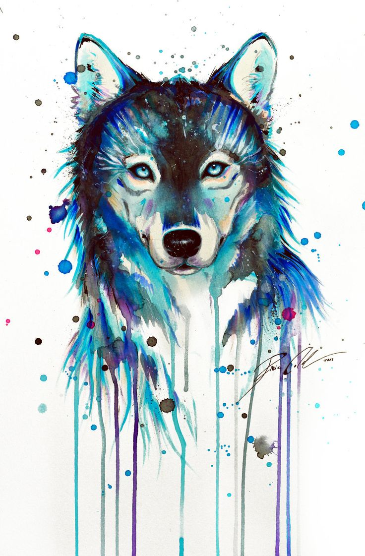 watercolor-dark-wolf-drawings